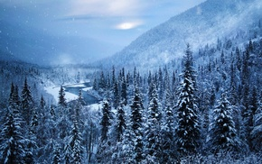snow, river, forest, white, nature, Alaska