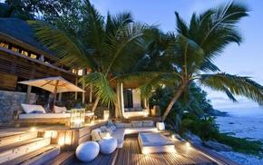 palm trees, sea, island