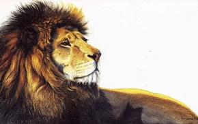 artwork, lion, animals
