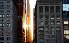 Chicago, architecture, building, Sun