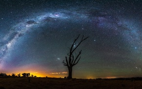stars, starry night, Milky Way, trees, landscape, night