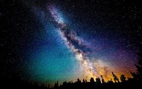 night, sunrise, long exposure, forest, starry night, landscape