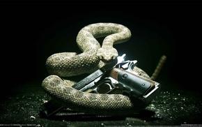 Hitman Absolution, gun, snake, PC gaming