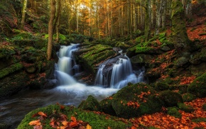 nature, waterfall, forest, landscape