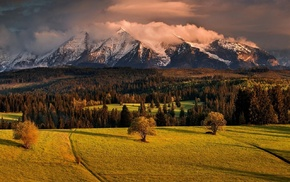 sunset, spring, mountain, trees, landscape, nature