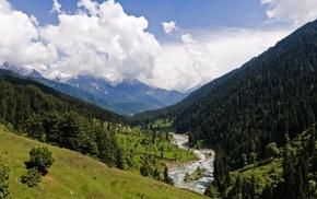 snowy peak, landscape, river, grass, trees, forest