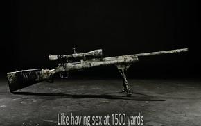 gun, rifles