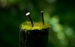 green, photography, blurred, Iron age, depth of field, macro