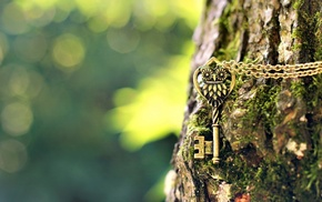 keys, depth of field, chains, photography, owl, green