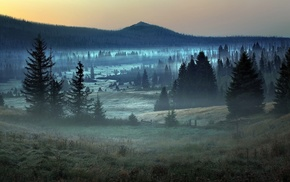 grass, sunrise, trees, mist, mountain, Germany