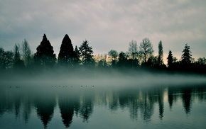 landscape, trees, mist, lake