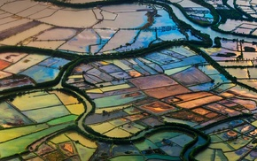 Indonesia, field, landscape, nature, aerial view