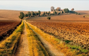 dirt road, road, landscape, nature, field, trees