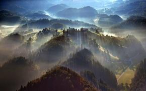 aerial view, landscape, nature, mist, sunbeams, forest