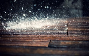 macro, depth of field, water, bokeh, wooden surface, rain
