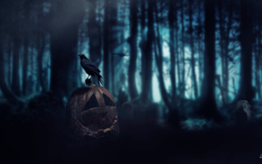 crow, death, Halloween, forest, Dark Age, pumpkin