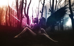 angel, photo manipulation, wings, graphic design, birds