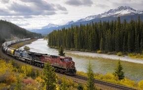 train, diesel locomotives, freight train