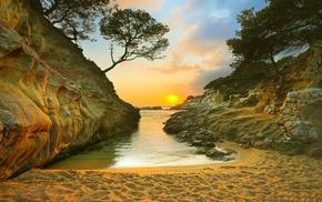 sand, beach, rock, nature, trees, coast