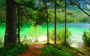lake, shrubs, summer, trees, mountain, landscape