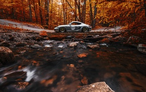 stones, Porsche Cayman, car, leaves, trees, long exposure