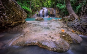 waterfall, turquoise, tropical, forest, nature, roots