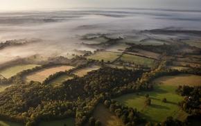 UK, mist, aerial view, landscape, forest, morning