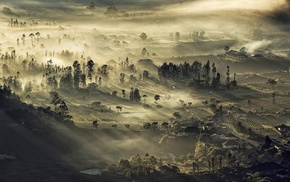 landscape, nature, village, mist, sunrise, Indonesia