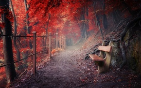mist, path, red, mountain, fall, fence