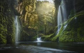 mist, forest, USA, waterfall, moss, valley