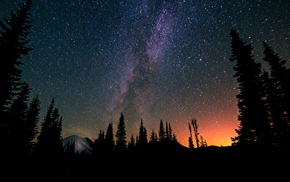 Milky Way, forest, mountain, nature, stars, silhouette