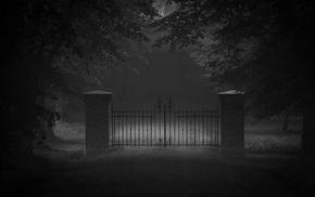 monochrome, landscape, dark, trees, door, mist