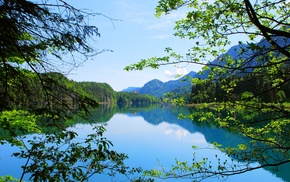 forest, nature, landscape, summer, water, mountain