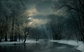 snow, trees, winter, mist, frost, cold