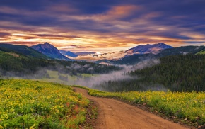 road, forest, clouds, sunset, mist, nature