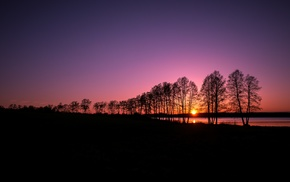 nature, trees, landscape, sunset, evening, clear sky