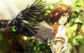 anime, looking back, Haibane Renmei, wings, Yoshitaka Amano, birds
