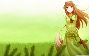 anime, Holo, Spice and Wolf