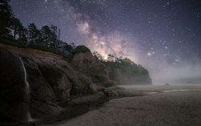 rock, beach, mist, landscape, coast, trees
