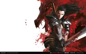 Dragon Age Dawn of the Seeker, Dragon Age