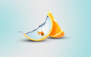 digital art, orange fruit, fish