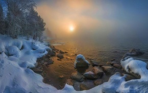 sunrise, nature, cold, mist, snow, trees