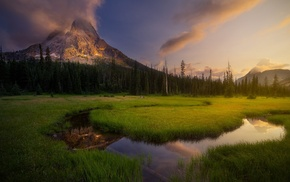 creeks, green, grass, mountain, reflection, landscape