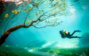 lake, Austria, underwater, divers, water, Grner See