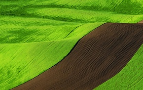 nature, landscape, green, multiple display, field, brown