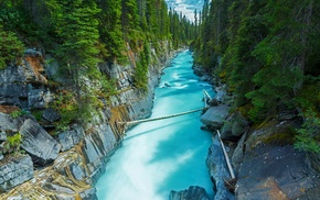 forest, trees, nature, turquoise, landscape, Canada