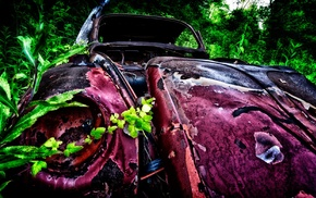 vintage, rust, pink, plants, car, wreck