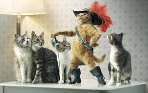Puss in Boots, cat, Raiden, animals