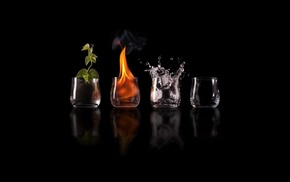 water, drinking glass, elements, black, nature, plants