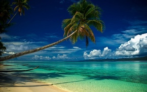 landscape, sea, turquoise, morning, nature, green